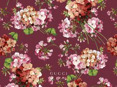 Bilderesultat for gucci floral
