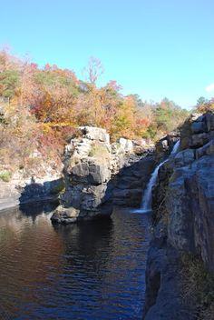 HIDDEN FALLS by Abraham Hunter 17x23 FRAMED PRINT Black Bear Autumn Trees Creek