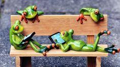 170323-Frogs-thumb.jpg (500×280)