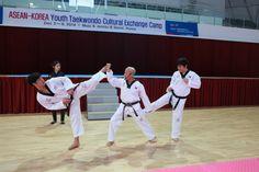 2014 ASEAN-KOREA Youth Taekwondo Cultural Exchange Camp -2014 한-아세안태권도문화교류캠프