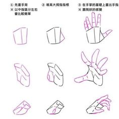 hand ref illustration Hand Drawing Reference, Anatomy Reference, Art Reference Poses, Photo Reference, Drawing Poses, Drawing Tips, Drawing Hands, Drawing Drawing, Drawing Stuff