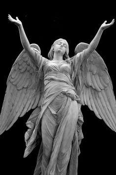 Angel by seian81.deviantart.com on @deviantART