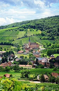 Vineyards and Villages ~ Alsace One of my favourite places on Earth.