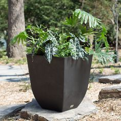 IQbana Square Grey Garden Planter | Square Planters | Pinterest | Grey  Gardens, Garden Planters And Planters
