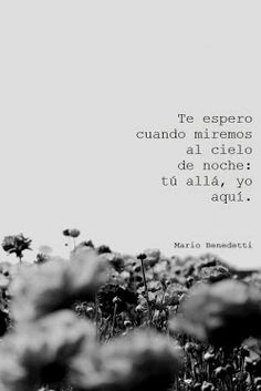 mario benedetti frases | Frases Benedetti Poemas Del Alma Amor Pic #24