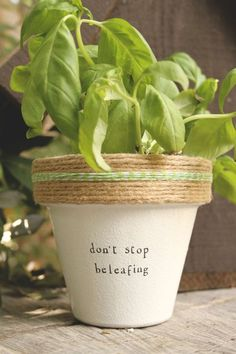 "Dont Stop Beleafing!  4"" and 6"" pots available for your indoor herb or plant! Pot does not include plant. These hand painted and stamped pots are perfect for your indoor herb garden! All pots made by Plant Puns are sealed with an earth safe finish for safe growing and consumption of edible herbs. Pots contain a drainage hole. Is this a gift?! Send us a message and we'll be sure to include a special note from YOU free of charge! If you're looking for a set of herbs be sure to check out our…"