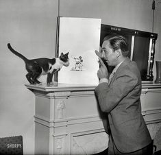 The Library of Congress has many treasures in it, one is this 1931 photo of Walt Disney with a Mickey Mouse drawing with a cat. Walt Disney is the man. Walt Disney, Disney Love, Disney Magic, Disney Mickey, Disney Cats, Disney Dream, I Love Cats, Crazy Cats, Mickey Mouse Drawings