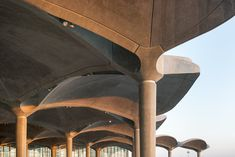 Gallery of Queen Alia International Airport / Foster + Partners - 8