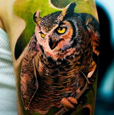 Owl by Oscar Åkermo