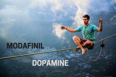 How Modafinil Strikes the Perfect Balance With Dopamine -