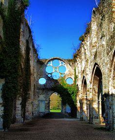 Abbaye des Vaux de Cernay. Près de mon vrai chez moi