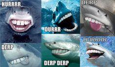 Tribute to shark week!