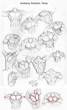 anatomy New Hair Cut new hair cut wallpaper Body Reference Drawing, Guy Drawing, Art Reference Poses, Anatomy Reference, Character Drawing, Drawing People, Drawing Sketches, Art Drawings, Male Figure Drawing