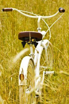 Rower cruiser  #bike #cruiser #beachbike #beachcruiser #royalbi #rower #miejski www.RoyalBi.pl