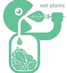 eat plants.