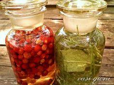 Cum se inmulteste hortensia prin butasi - magazinul de acasă Salvia, Health, Ethnic Recipes, Urban, Canning, Health Care, Sage, Salud