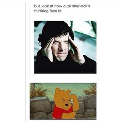 Sherlock being compared to Winnie the Pooh. The best thing. Sherlock Holmes, Sherlock Fandom, Funny Sherlock, Sherlock Quotes, Supernatural Funny, The Mentalist, Johnlock, Hunger Games, Benedict And Martin