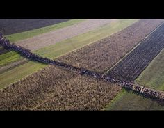 """Five Million Migrants March on Europe """"We cannot guarantee the public safety anymore"""""""