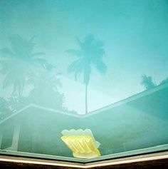 "Karine Laval's photo ""Poolscape"" and the ""Untitled Pool Series"""