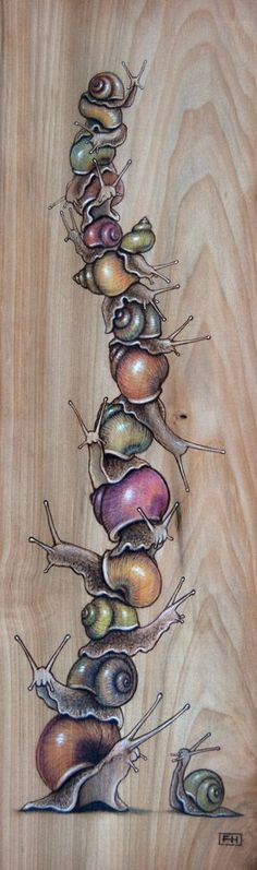 Snail Pile 03 - Pyrography, coloured pencil and pastel on wood panel x by Fay Helfer. Snail Art, Posca Art, Illustrations, Illustration Art, Pyrography, Art Inspo, Painting & Drawing, Amazing Art, Art Drawings