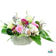 Flori si gingasie