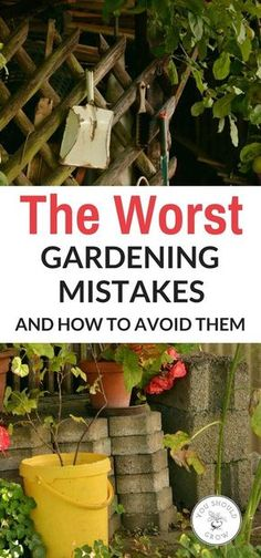 If your a beginner in the gardening world, check out these 10 worst gardening mistakes and how to avoid them. ` Excellent Advise~~~