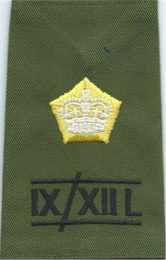 IX/XIIL Major Lancers) Rank Slide On Olive Green Officer rank badge for sale Queen Elizabeth Crown, Military Ranks, Green Queen, Royal Marines, Royal Air Force, Chevrolet Logo, Badges, Olive Green, Patches