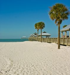 87 degrees perfect for your Clearwater Beach tour with us tomorrow! oh? You don't have seats yet? Call us now before your seats are taken! 407-522-5911