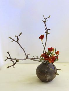 Ikebana International Melbourne Chapter is having an exhibition next month. It will be a wonderful opportunity to see arrangements by memb...