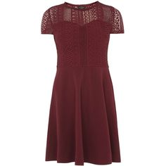 Dorothy Perkins Cranberry Lace Top Dress (€13) ❤ liked on Polyvore featuring dresses, red, short-sleeve lace dresses, reds jersey, short sleeve lace dress, short sleeve dress and red lace dresses