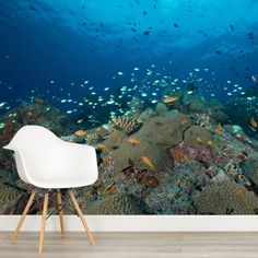 Our underwater wallpaper will make you feel as if you're living under the sea! Create an amazing underwater mural with our stunning photo-realistic murals.
