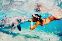 """Beso a uno de los animales más hermosos del mundo """" El delfín"""" pic.twitter.com/IdXDOUB6iZ"""