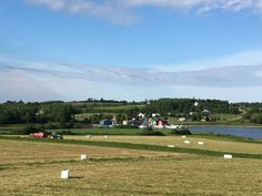 https://flic.kr/p/HuKMzD | View of French River and farmer baling hay.