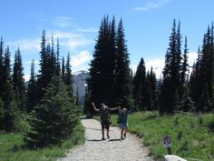 Choosing Mount Rainier's Wonderland Trail - My First Backpacking Trip - REI Blog