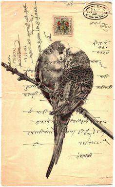 'encore' bic biro drawing on a antique Indian document on Behance Biro Art, Biro Drawing, Pen Art, Mark Powell, Envelope Art, Postcard Art, Street Art, Bird Illustration, Illustrations