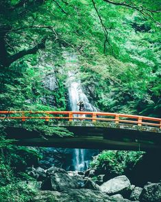 . . . waterfall . . . . . . おはようございます。 やっぱりこういう自然のところに行くのも 気持ちよくていいな~と思った日でした。 . Osaka/Japan . #snap#snapshot #ファインダー越しの私の世界 #カメラ好きな人と繋がりたい #写真好きな人と繋がりたい #jp_gallery#lovers_nippon#loves_nippon#whim_life#reco_ig#IGersJP#icu_japan#team_jp_#japan_daytime_view#webstagram#instagood#phos_japan#xpro2#tokyocameraclub#lovers_nippon_portrait#portrait#creativeshot#naturephotography#webstapick#instagram#instagramjapan#ink361_asia#大阪#箕面の滝#waterfall