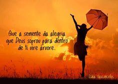 SEMENTE DA ALEGRIA.