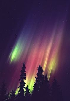 Aurora Borealis in Luosto, Finland Emoticons, Sky Landscape, Beautiful Sky, Amazing Nature, Belle Photo, Nature Photos, Night Skies, Mother Nature, Galaxies