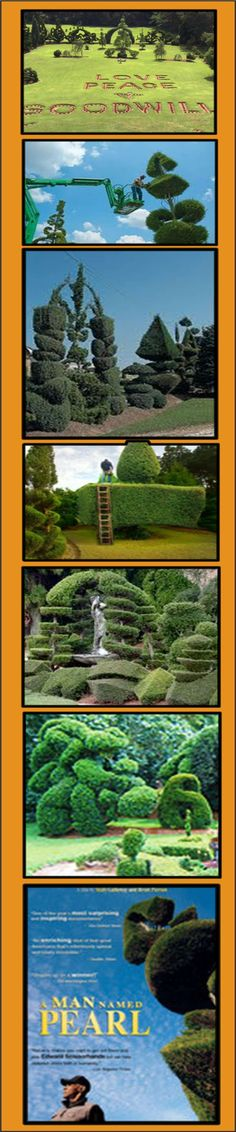 The Pearl Fryar Topiary Garden.   We just watched this great documentary on Netflix.  AMAZING!! ~One Amazing Man.  http://www.pearlfryar.com/