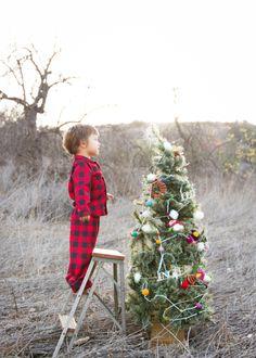 Tree time! Kyliechevalier.com