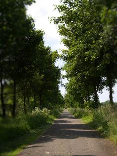 Urlaub in Ostfriesland   Ferien in Ostfriesland