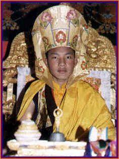17th karmapa ogyen trinley dorje   17th Karmapa