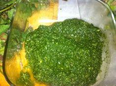 Making Pesto with Purple Dead Nettle