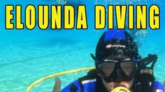 See This Wonderful HD Video Of Friendly Fish With Divers In Elounda Mare...