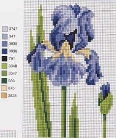 iris cross stitch More