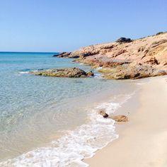 Calamarina in Sardegna