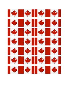 canada_cupcake_flags.jpg