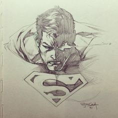 Superman by Stephen Segovia   #manofsteel #superman #dccomics #sketch