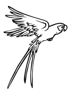 Ideas flying bird clipart coloring pages for 2019 Bird Coloring Pages, Online Coloring Pages, Coloring Pages For Kids, Kids Coloring, Vogel Clipart, Bird Clipart, Parrot Drawing, Fly Drawing, Nicolas Vanier