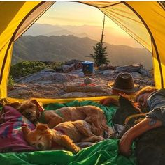 camping with your best friends
